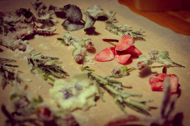BLOG CHRISTMAS Crystallised flower cakes-5