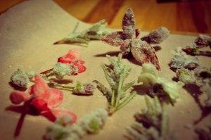 BLOG CHRISTMAS Crystallised flower cakes