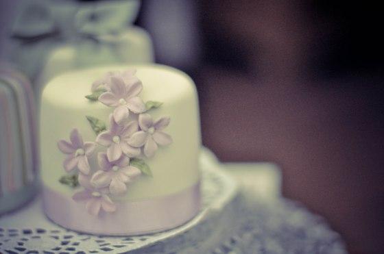 mini cakes_humble_3